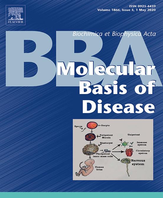"""Dr. Echeverría ha publicado recientemente el siguiente artículo en Biochimica et Biophysica Acta-Molecular Basis of Disease """"Endothelial dysfunction in pregnancy metabolic disorders. Link: doi: 10.1016/j.bbadis.2019.02.009."""